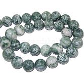 Perles en pierres gemme, tache verte jasper, ronde, environ 12 mm de diamètre, Trou: 1mm, Environ 33 pcs/chapelet, 15.5