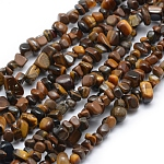 Natural Tiger Eye Beads Strands, Chip, 5~8mm, Hole: 1mm; about 33''(84cm)