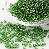 8/0 Glass Seed Beads, Silver Lined Round Hole, Round, Green, 3mm, Hole: 1mm; about 10000 beads/pound