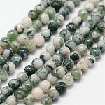 Chapelets de perles en jaspe à pois verts naturels, ronde, 3mm, trou: 0.5 mm; 125 perle / Chapelet, 15.7