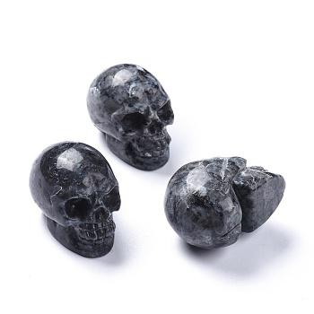 Хэллоуин натуральный лабрадорит украшения для дома, череп, 38~38.5x32~32.5x49~50 мм