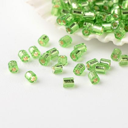 Fgb® deux perles de rocaille doublées d'argentSEED-A023-F-H49-1