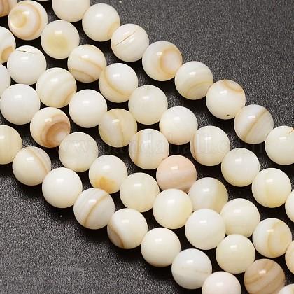 Hebras de cuentas redondas de concha de agua dulce naturalX-SHEL-M013-01-1