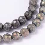 Electroplate Natural Labradorite Round Bead Strands, Faceted, 6mm, Hole: 1mm; about 62pcs/strand, 14.9