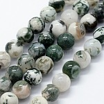Natural Tree Agate Beads Strands, Round, 6mm, Hole: 1.2mm; about 63pcs/strand, 14.76inches(37.5cm)