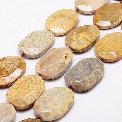 Cuentas de piedra de crisantemo natural hebrasG-A171-10H-1