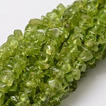 Natural Peridot Chip Bead Strands, 3~5x3~5mm, Hole: 1mm; about 36