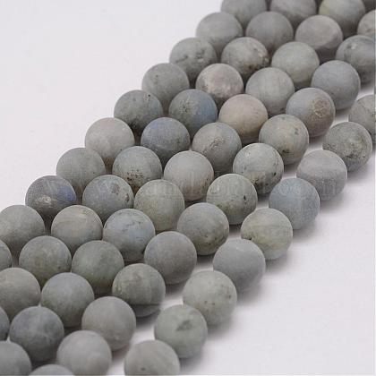 Natural Labradorite Beads StrandsG-G970-02-8mm-1
