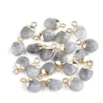Electroplate Natural Labradorite Charms, with Iron Findings, Faceted, Oval, Golden, 14~15x8x5~5.5mm, Hole: 1.8mm