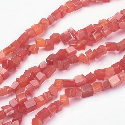 Chapelets de perles d'œil de chatGLAA-F067-05D-1