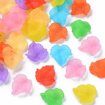Осенняя тема прозрачные матовые акриловые подвески, кленового листа, разноцветные, 24x22.5x3 мм, Отверстие : 1 мм ; около 962 шт / 500 г