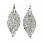 Iron Big Pendants, Electroplate Natural Leaf, Leaf, Platinum Plated, 52~53x19~20x1.5mm, Hole: 3x5.5mm