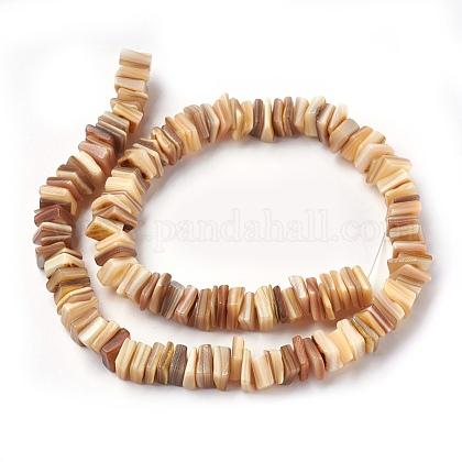 Abalorios de concha de agua dulce hebrasBSHE-O017-10C-1
