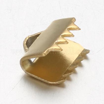 真空メッキ304ステンレス鋼リボンクランプエンドSTAS-F094-18-1