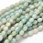 Oval Natural Amazonite Bead Strands, 10x8mm, Hole: 1mm; about 39pcs/strand, 15.7