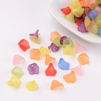 Perles acryliques transparents dépoli, teinte, fleur, couleur mixte, longueur d'environ 9~10 mm ,  largeur de 9~10 mm, Trou: 1mm