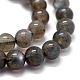 Natural Labradorite Beads StrandsG-K285-03-8mm-3