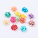 樹脂カボション, 花, ミックスカラー, 18~20x9mm