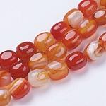 Натуральные полосатые агатовые / полосатые агатовые бусинки, окрашенные, барабан, оранжево-красные, 11~14x9~11x9~11 мм, отверстия: 1 мм; 27~28 шт / нитка, 14.37