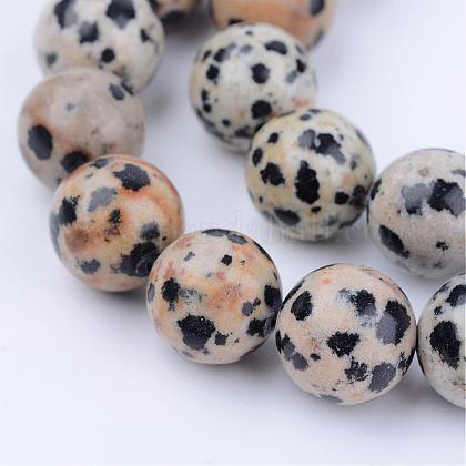 Chapelets de perles en jaspe dalmatien naturelleG-Q462-8mm-30-1