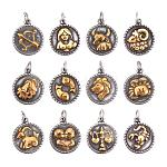 PandaHall 12pcs/Set Golden 316 Stainless Steel Horoscope Twelve Constellation Zodiac Sign Pendant Charms for DIY Bracelets Necklaces Jewelry Making Findings Supplies Personalized Accessories