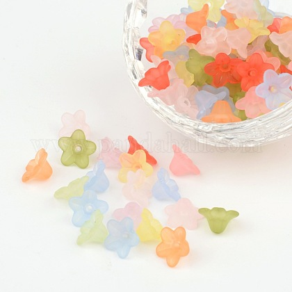 Mixed Color Frosted Transparent Acrylic Flower BeadsX-M-PL554-1