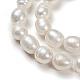 Perlas naturales abalorios de agua dulce cultivadasPEAR-D095-1-5