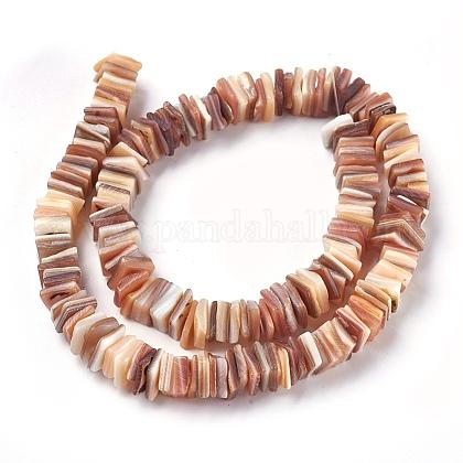 Abalorios de concha de agua dulce hebrasBSHE-O017-10B-1