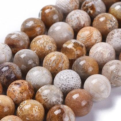 Натуральный камень хризантемы / ископаемое коралловые бусы прядиG-D135-8mm-01-1