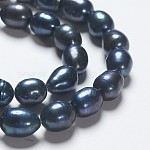Rice Dyed Natural Cultured Freshwater Pearl Beads Strands, Black, 11~13x9~10mm, Hole: 0.8mm; about 30pcs/strand, 14.5