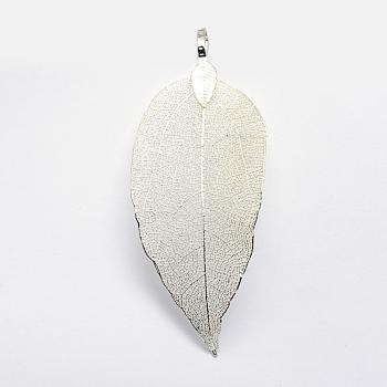 Латунные покрытые натуральными листьями большие подвески, долговечный, лист, серебристый цвет, 52~86x23~46x0.5~3 мм, отверстие : 3x5.5 мм