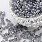 6/0 perles de rocaille en verre, Ceylan ruond, lt.grey, environ 4 mm de diamètre, Trou: 1mm, environ 4500 pcs / livre