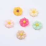 Resin Cabochons, Flower, for Costume & Headwear and Earring Decoration, Mixed Color, 13x4mm