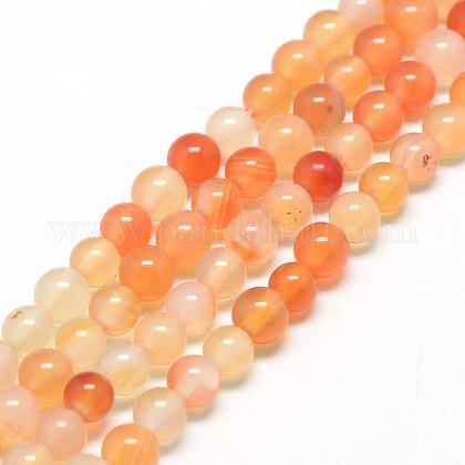 Chapelets de perles en cornaline naturelleG-Q462-6mm-45-1